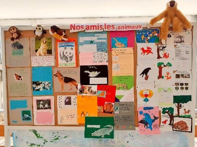Journée Mondiale des Animaux