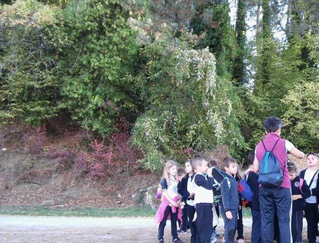 Μικροί εξερευνητές στα Λάζαινα (Α΄ τάξη)