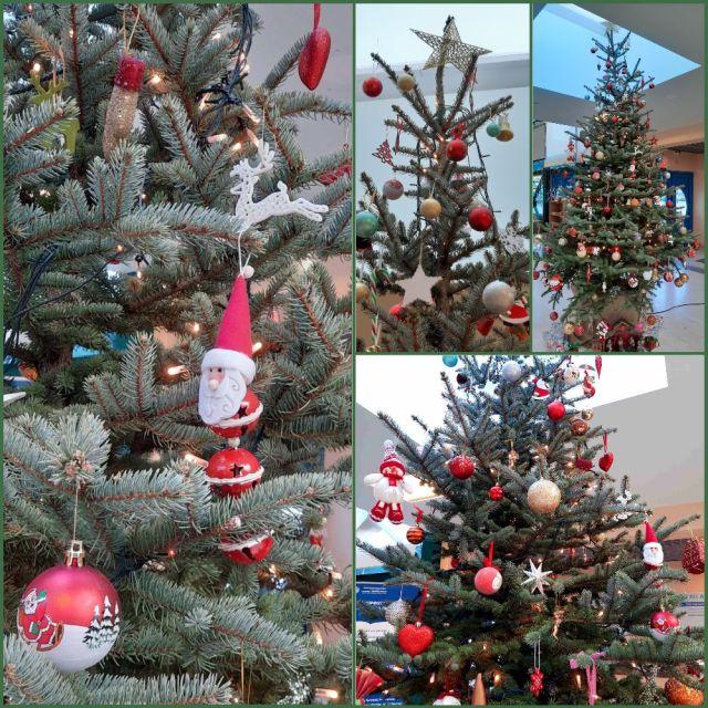 Το χριστουγεννιάτικο δέντρο τού Σχολείου μας, μια παράδοση!