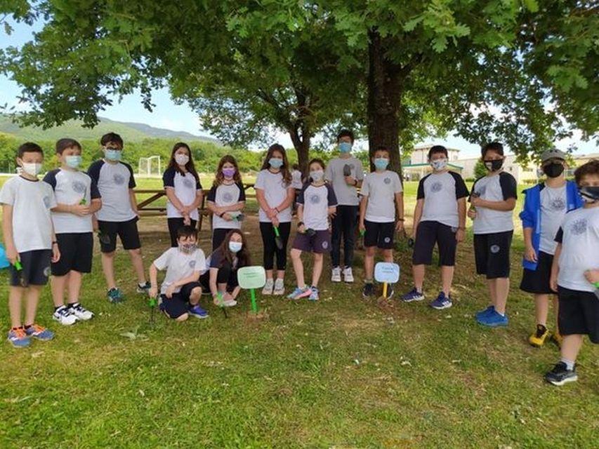 Παγκόσμια Ημέρα Περιβάλλοντος (Δ΄ τάξη)