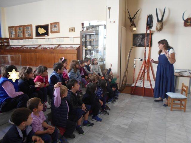 Εξερεύνηση στο Μουσείο Φυσικής Ιστορίας