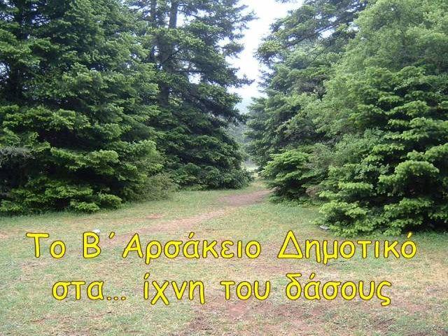 Το Β΄ Αρσάκειο Δημοτικό στα ίχνη τού δάσους...
