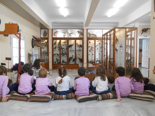 Ένα Μουσείο στο Σχολείο μας!