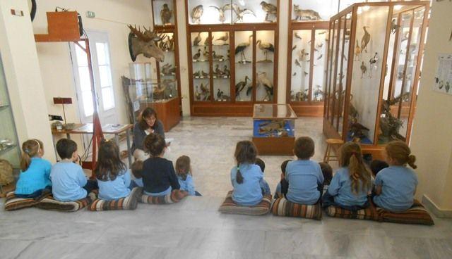 Τα προνήπια στο Μουσείο Φυσικής Ιστορίας