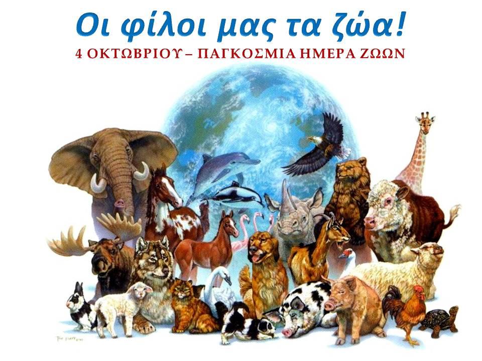 Οι φίλοι μας τα ζώα!