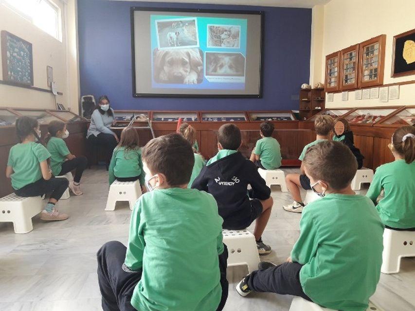 Παγκόσμια Ημέρα Ζώων (Β΄ τάξη)